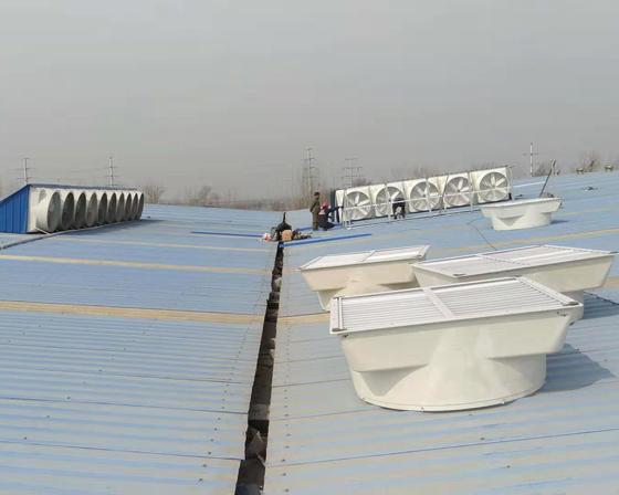兰考环嘉集团客户案例亚博体育yabo88在线ios安装现场
